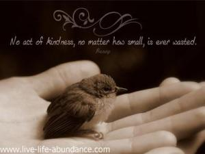 famous-inspirational-quote-no-act-of-kindness-no-matter-how-small-is-ever-wasted-21394562