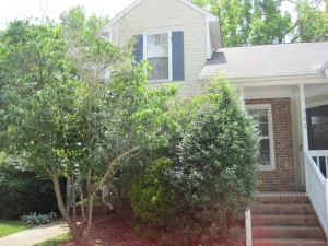 mauldin-home-before-taking-out-front-bush