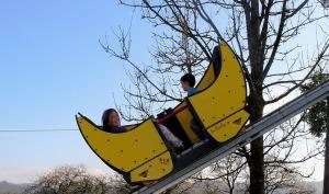 roller-coaster-470407_960_720